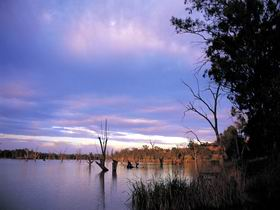Loch Luna Game Reserve and Moorook Game Reserve - Accommodation Gold Coast