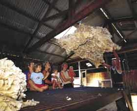 Shear Outback the Australian Shearers Hall of Fame - Accommodation Gold Coast