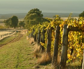 Captains Creek Organic Wines - Accommodation Gold Coast