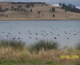 Lake Liddell Recreation Area - Accommodation Gold Coast