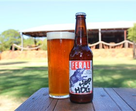 Feral Brewing Company - Accommodation Gold Coast