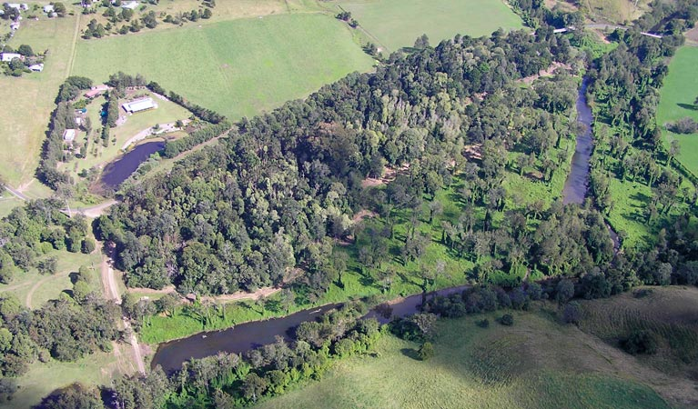 Moore Park Nature Reserve - Accommodation Gold Coast