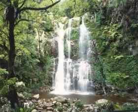 Budderoo National Park - The Falls Walk - Accommodation Gold Coast