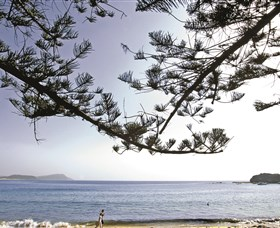 Terrigal Beach - Accommodation Gold Coast