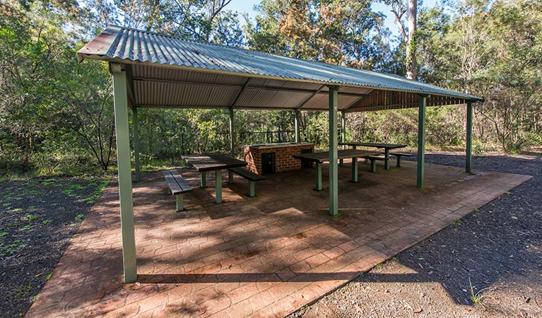 Brimbin picnic area - Accommodation Gold Coast