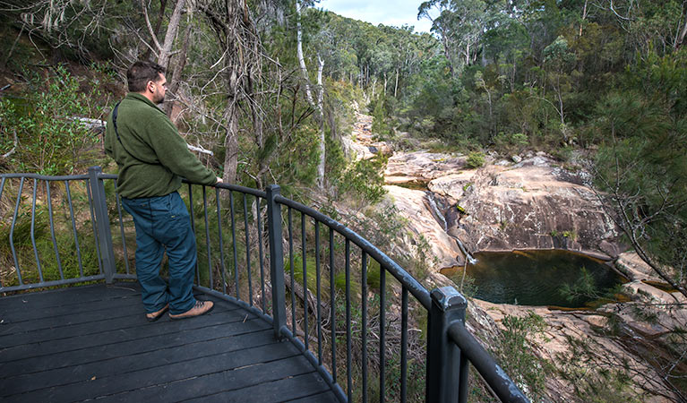 Biamanga National Park - Accommodation Gold Coast
