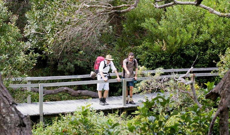 Wilsons Headland walking track - Accommodation Gold Coast