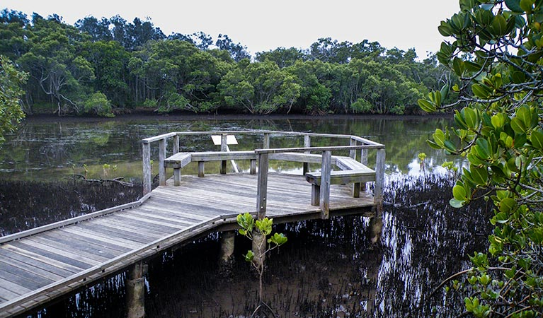 Walk on Water walking track - Accommodation Gold Coast