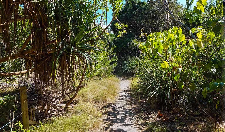 North Head walking track - Accommodation Gold Coast