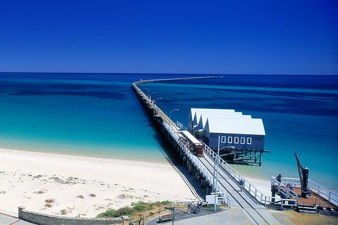 Full-Day Busselton Jetty, Train Ride & Dophin Discovery