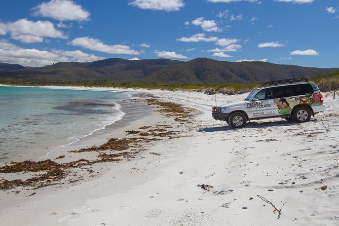 4X4 and Lunch Half Day Bicheno Coastal Mountain - Accommodation Gold Coast