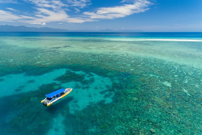 Ocean Safari Great Barrier Reef Experience in Cape Tribulation - Accommodation Gold Coast