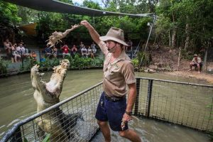 Hartley's Crocodile Adventures Day Trip from Cairns - Accommodation Gold Coast