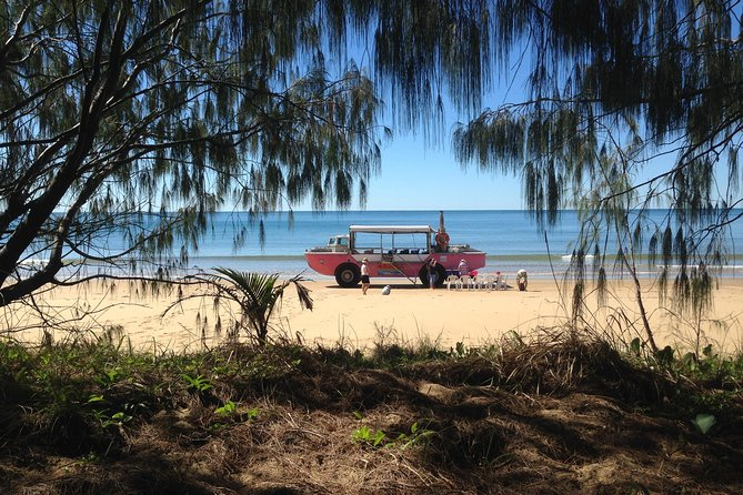 1770 Coastline Tour by LARC Amphibious Vehicle Including Picnic Lunch - Accommodation Gold Coast