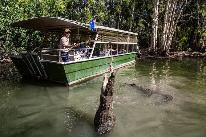 Hartley's Crocodile Adventures Day Trip from Palm Cove - Accommodation Gold Coast