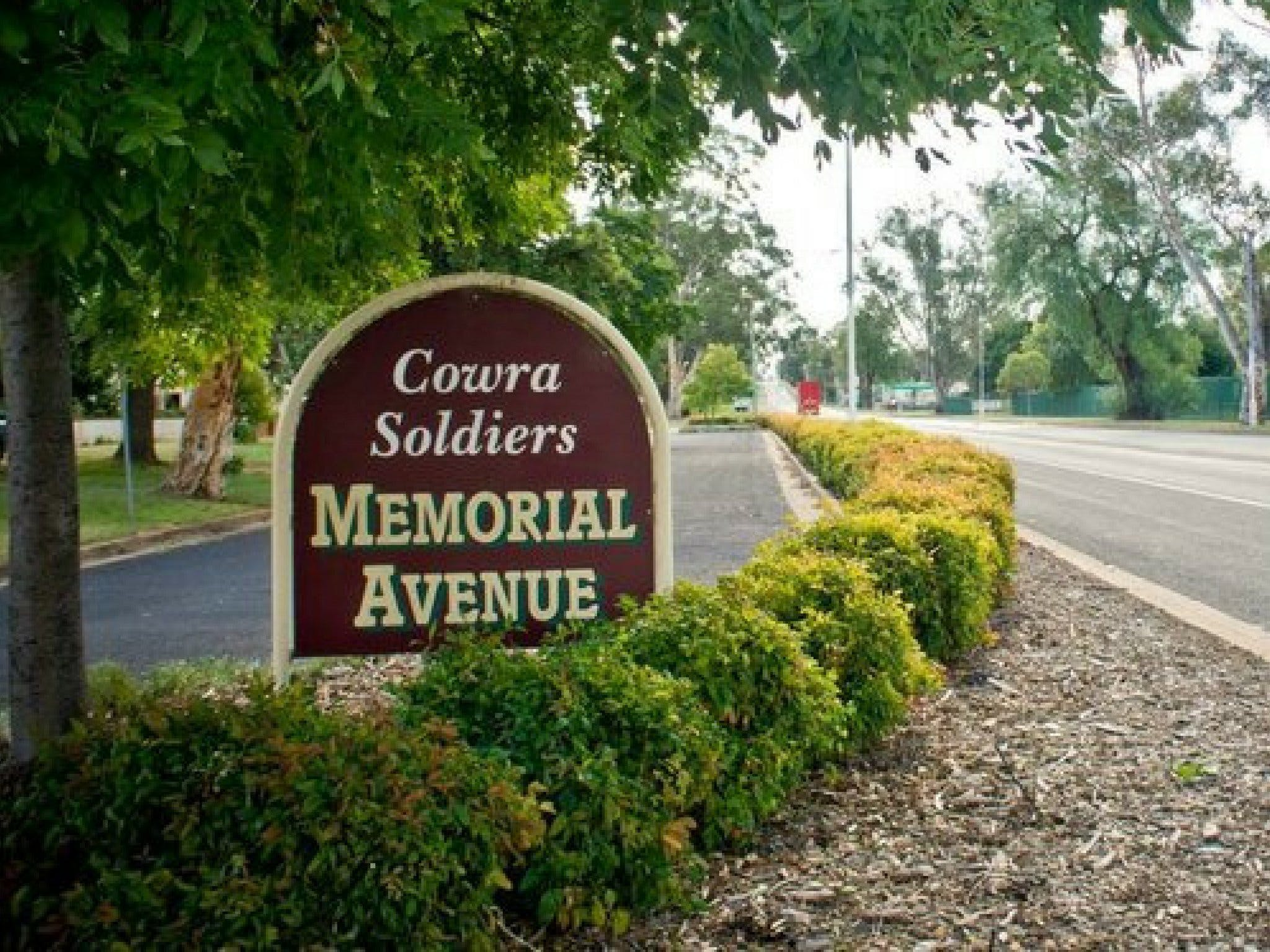 Memorial Avenue in Cowra - Accommodation Gold Coast