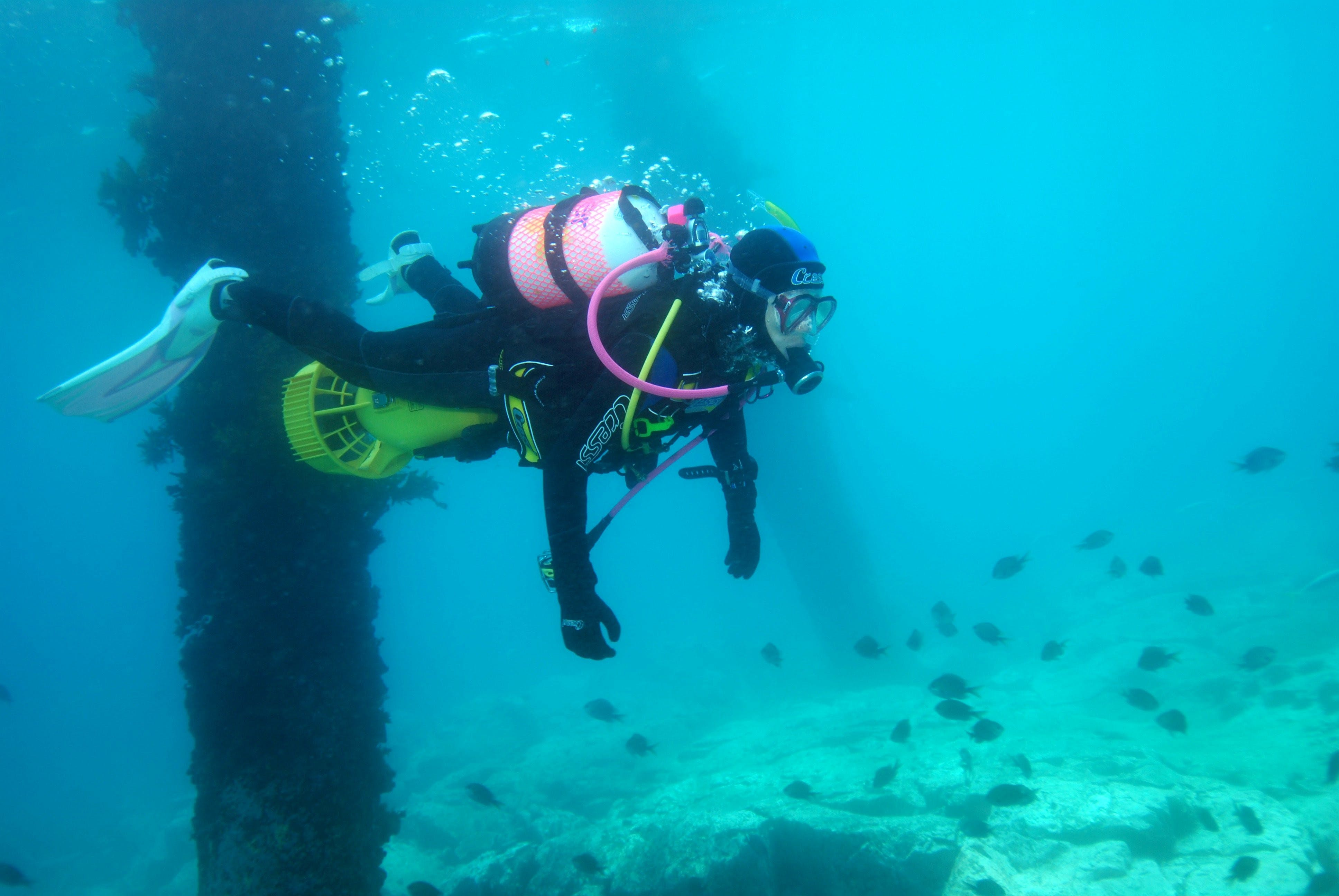 Shellharbour Scuba  and Photography Centre - Accommodation Gold Coast