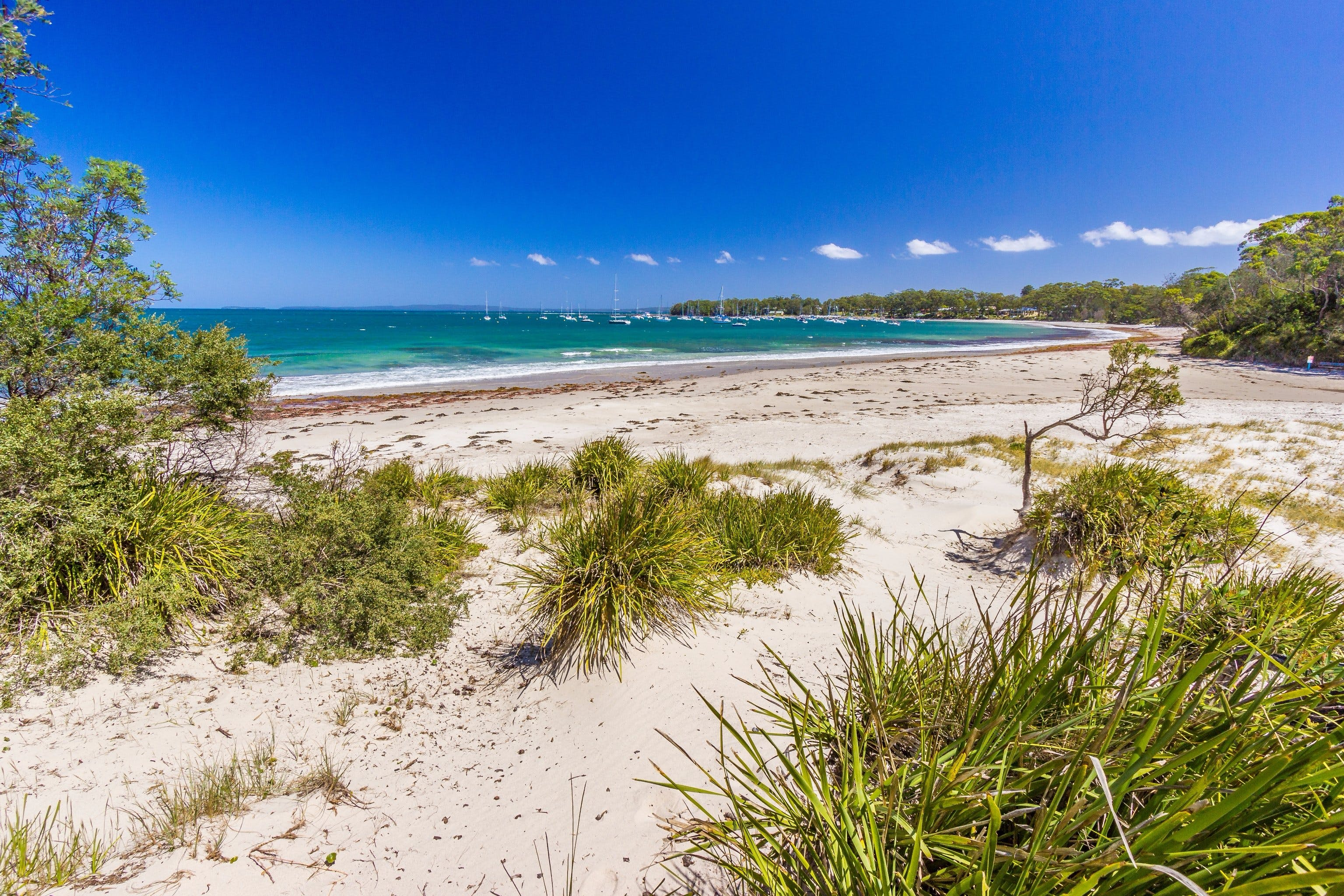 Callala Bay - Accommodation Gold Coast