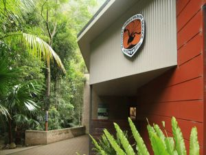 Minnamurra Rainforest Centre Budderoo National Park - Accommodation Gold Coast