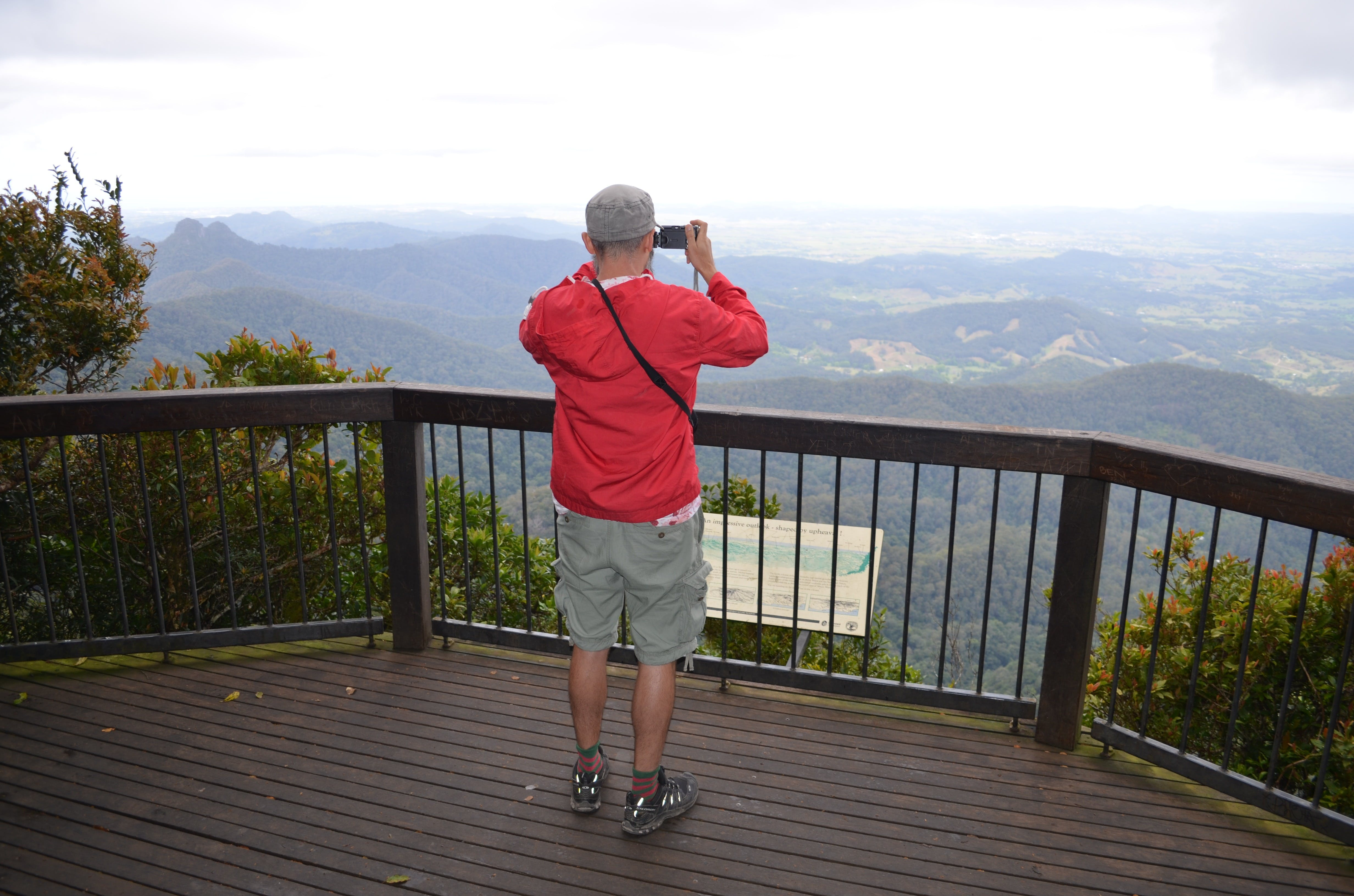 Best of All lookout track Springbrook National Park - Accommodation Gold Coast