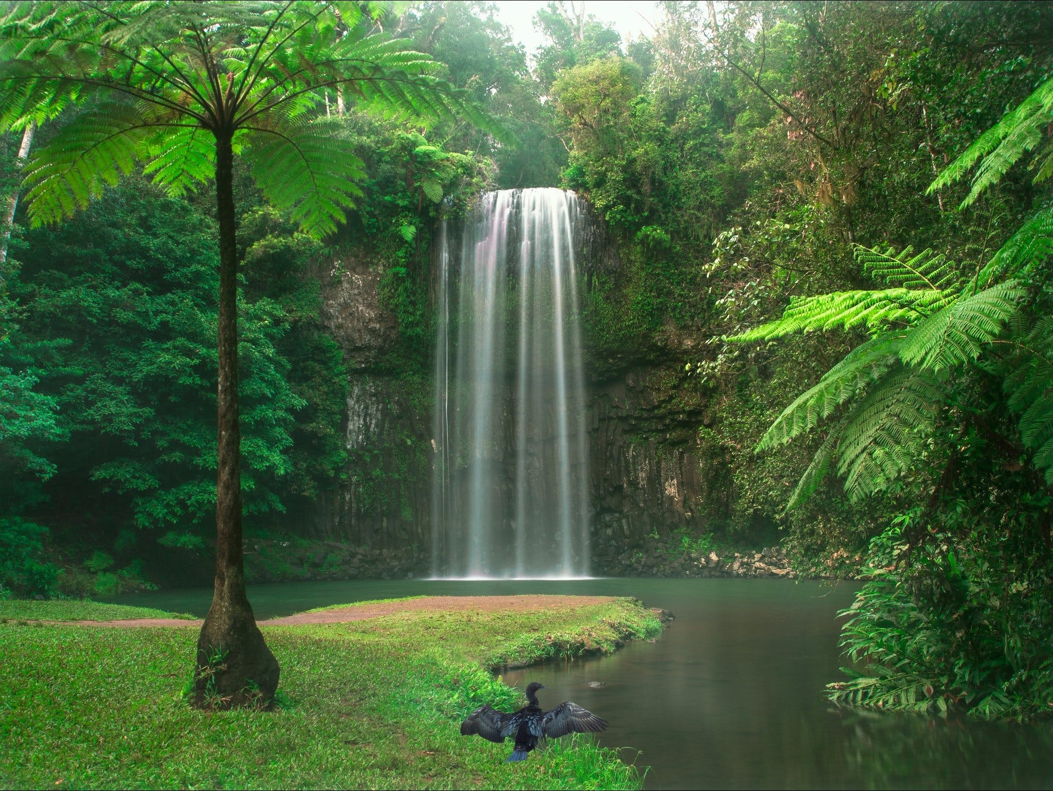 Atherton Tablelands - Accommodation Gold Coast