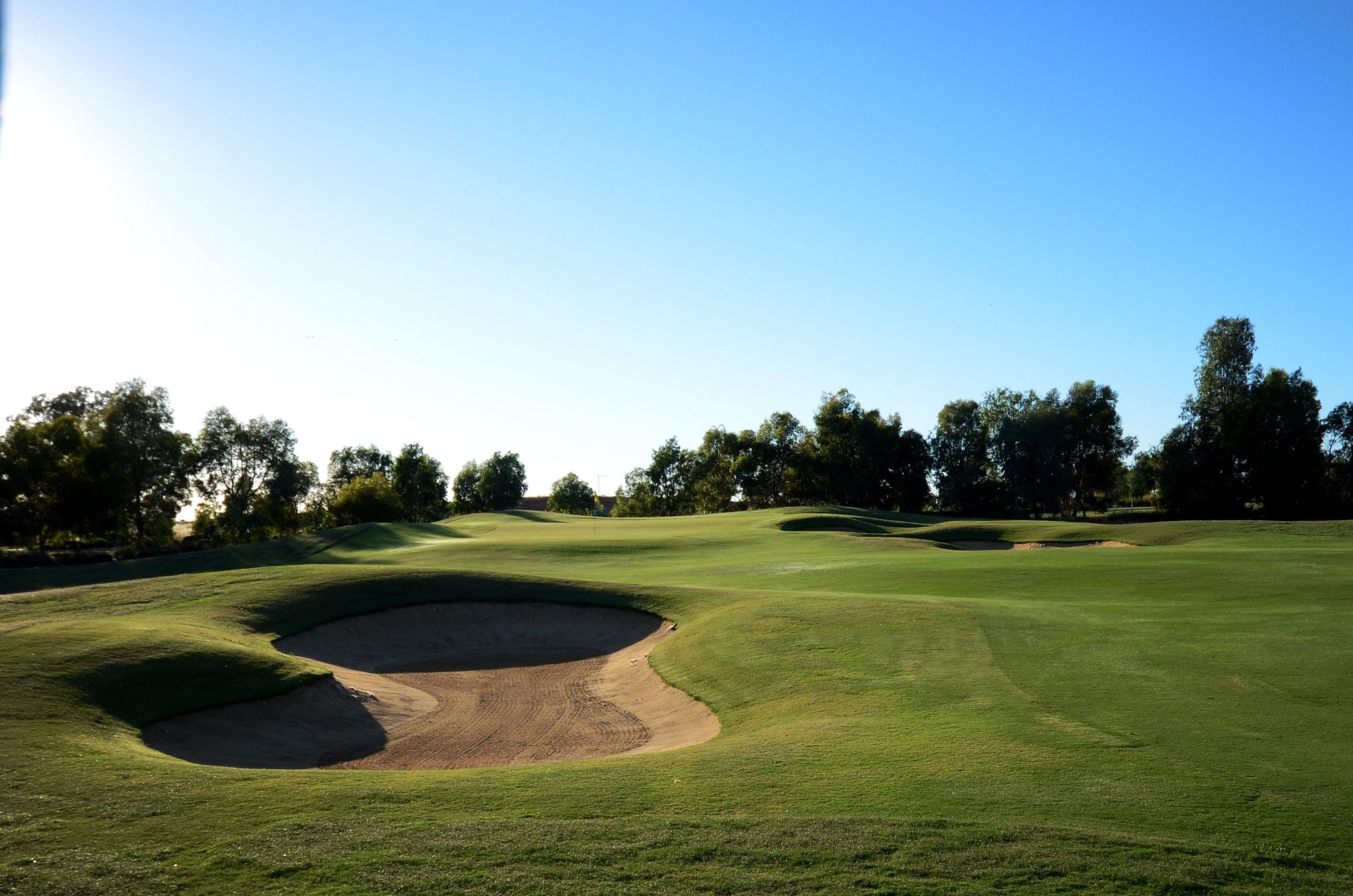 Black Bull Golf Course - Accommodation Gold Coast