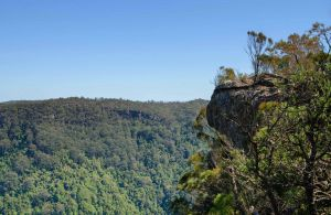 Cooks Nose Walking Track - Accommodation Gold Coast