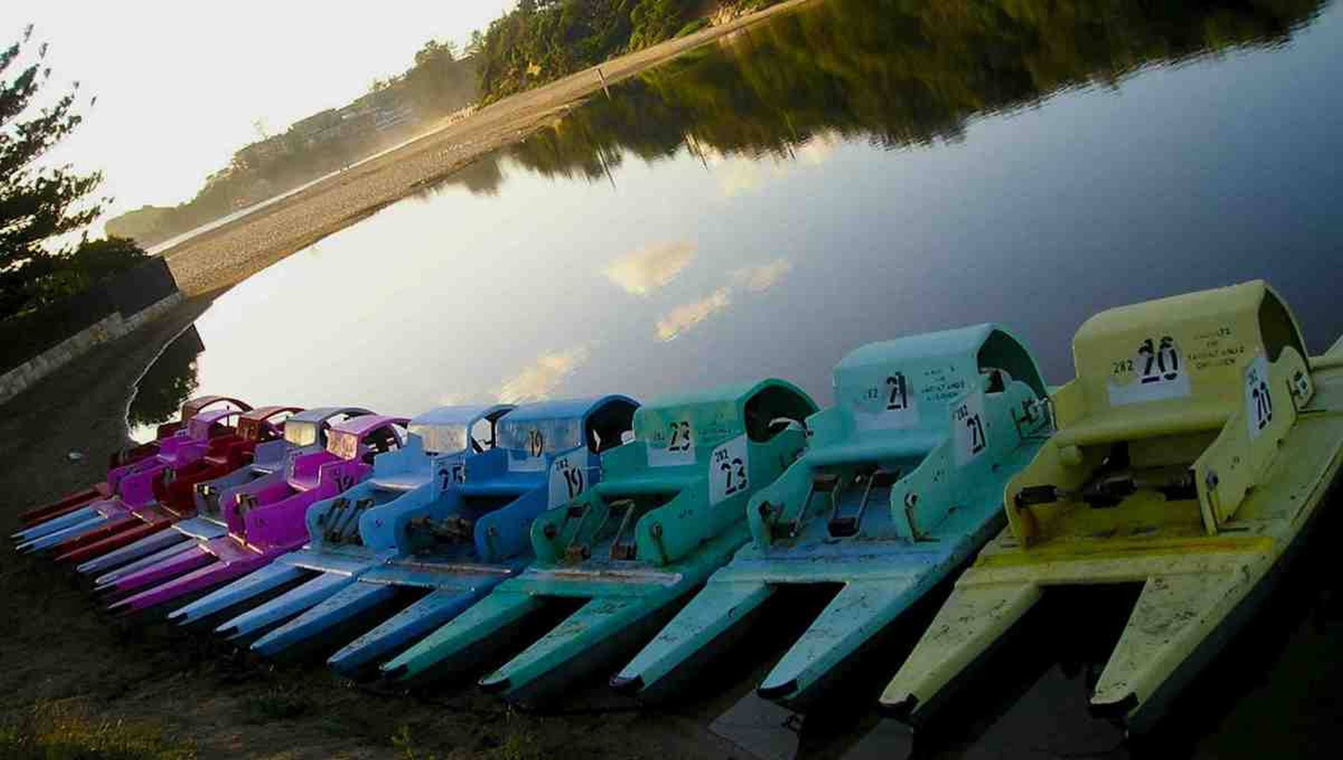 Terrigal Paddle Boats and Stand Up Paddle Boards - Accommodation Gold Coast