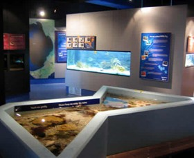 Marine and Freshwater Discovery Centre - Accommodation Gold Coast