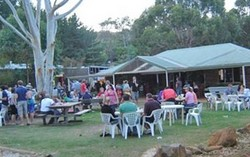 Bush Shack Brewery - Accommodation Gold Coast
