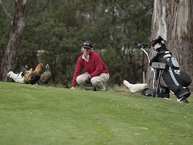 Tasmania Golf Club - The