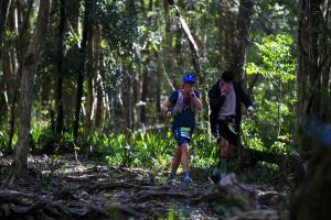 Elephant Trail Race - Accommodation Gold Coast